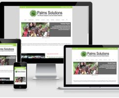 Palms Solutions